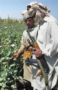 The Taliban's cash generating renewable resource. Opium
