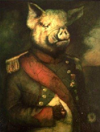 comrade-napoleon1