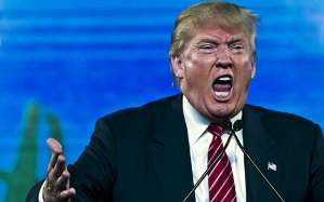 Donald-Trump_3372655b